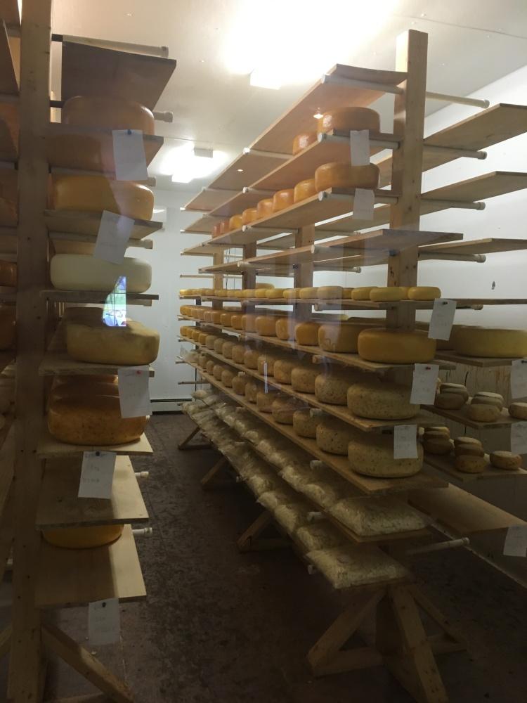 cheeseladys-gouda-prince-edward-island