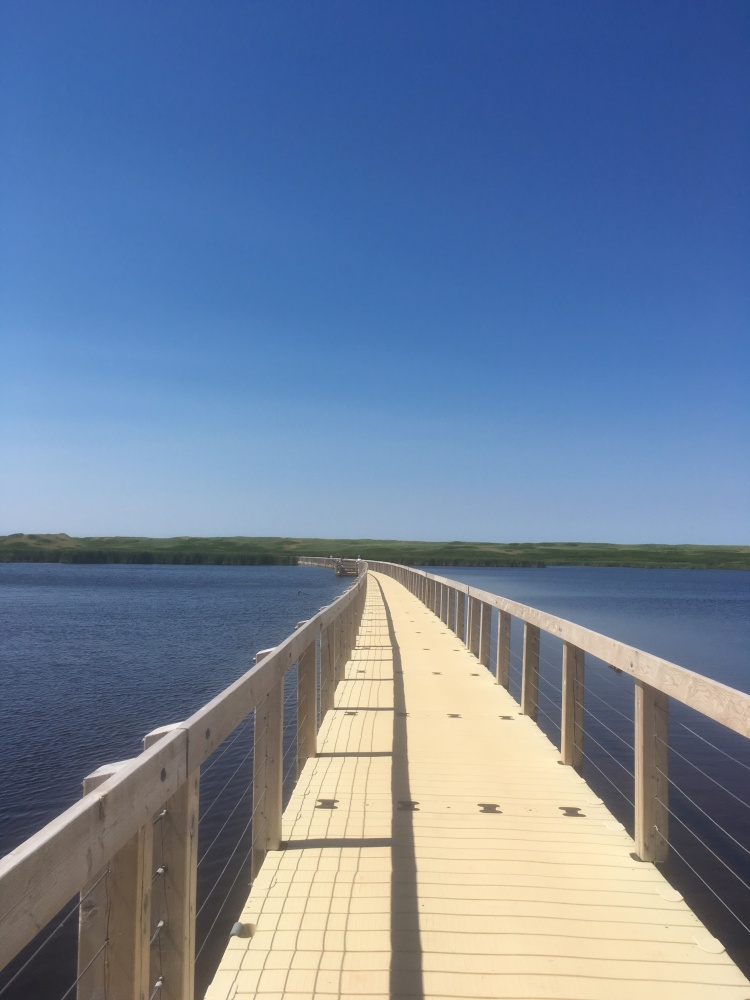 greenwich-national-park-boardwalk-1