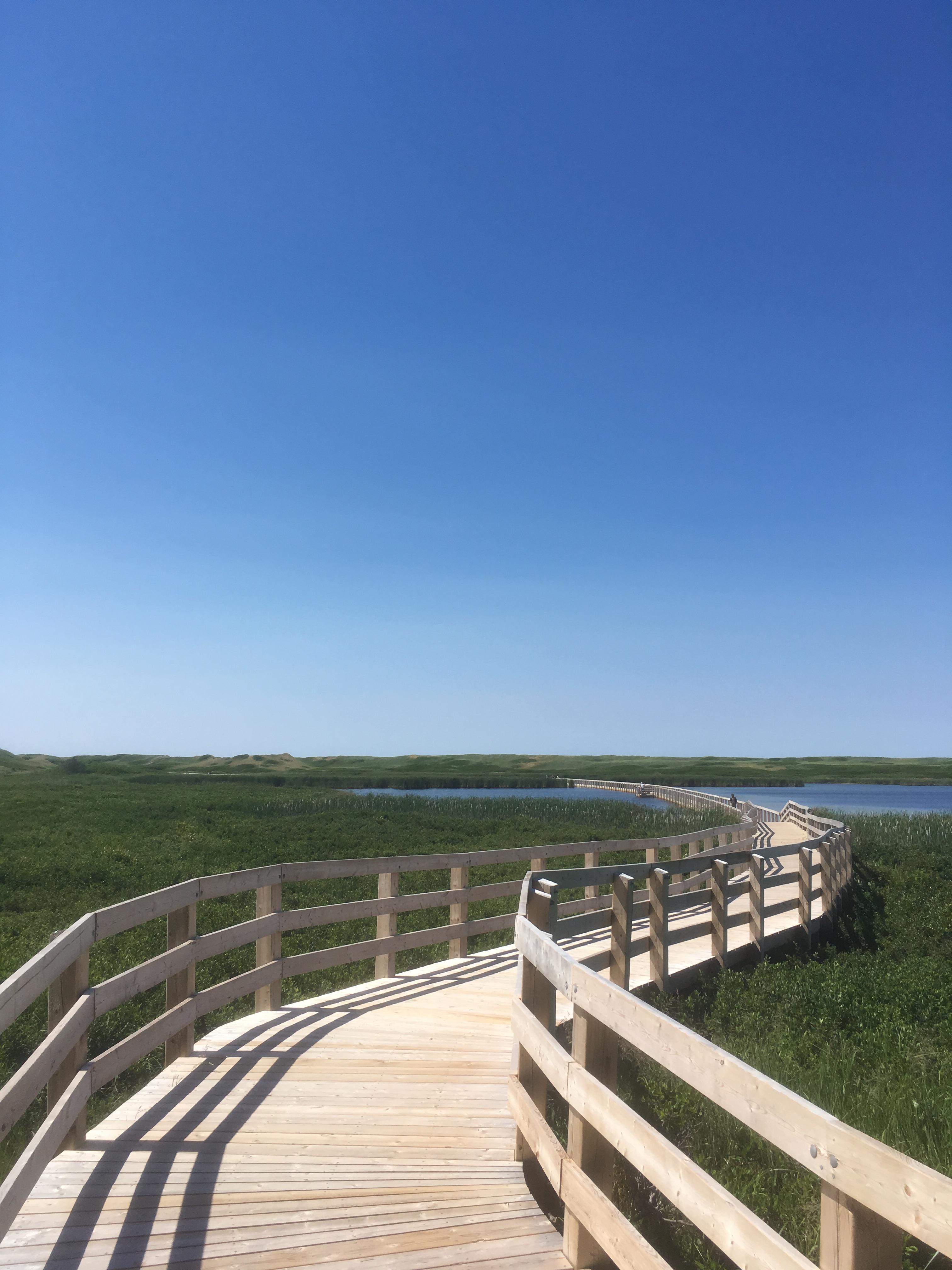 greenwich-national-park-boardwalk