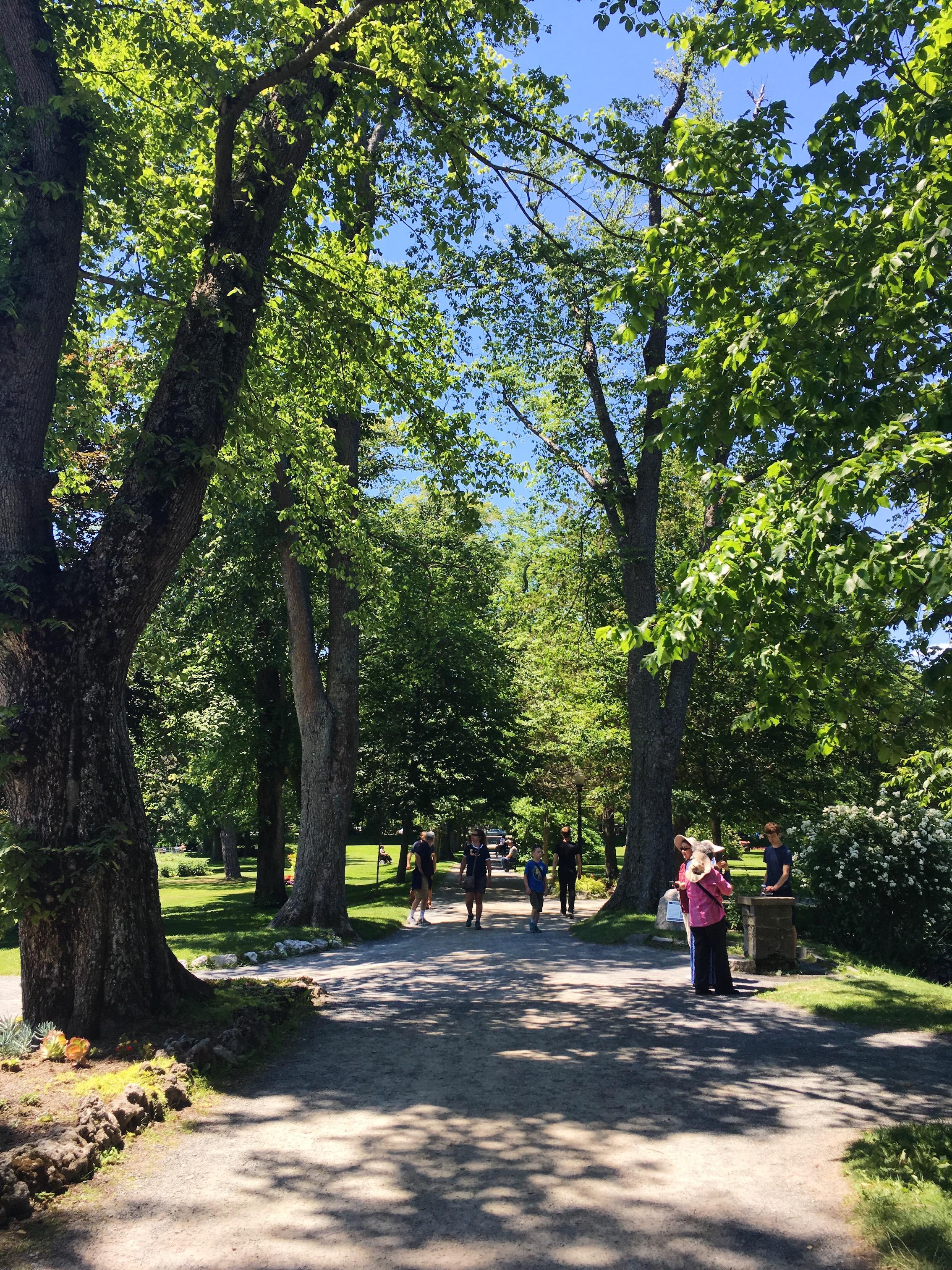 halifax-public-gardens