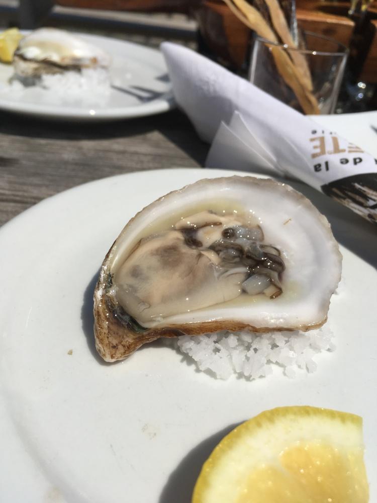 huitre-a-labri-de-la-tempete-brasserie-iles-de-la-madeleine