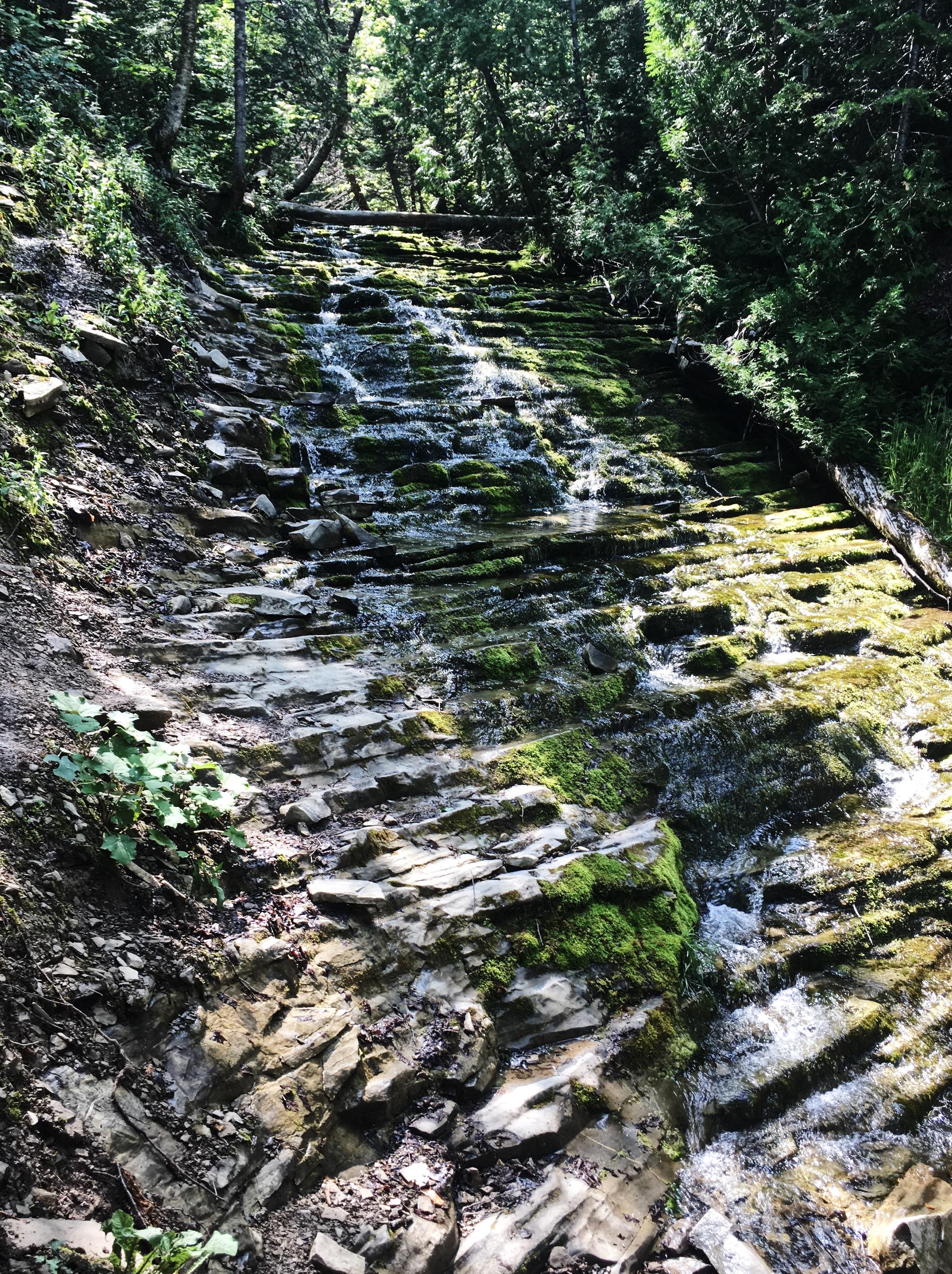 sentier-de-la-chute-gaspésie-québec